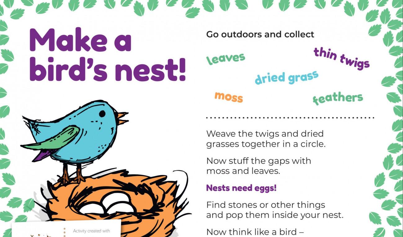 Make a Bird's Nest