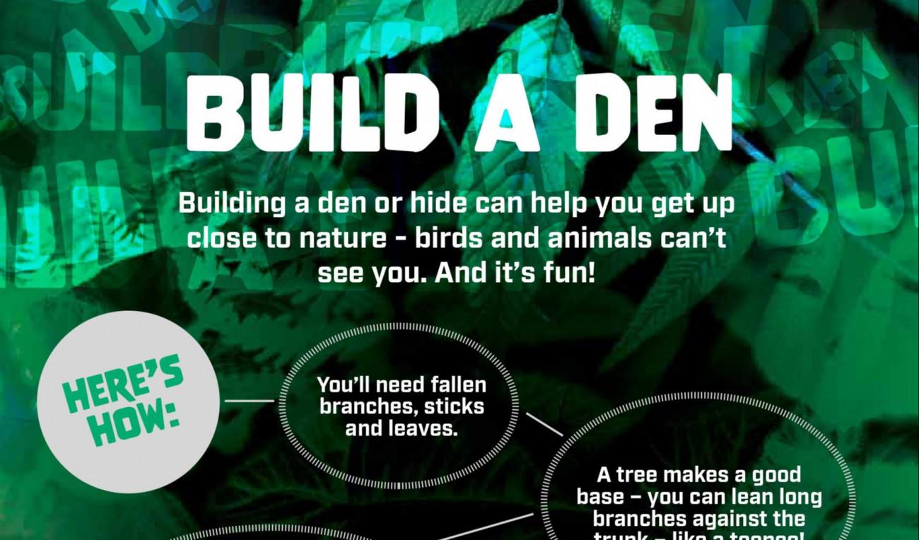 Build a Den!