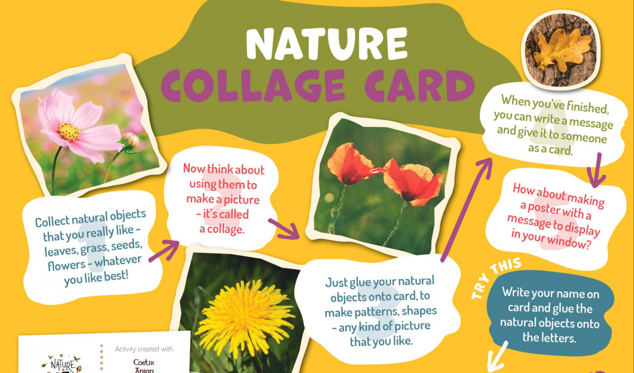 Nature Collage Card