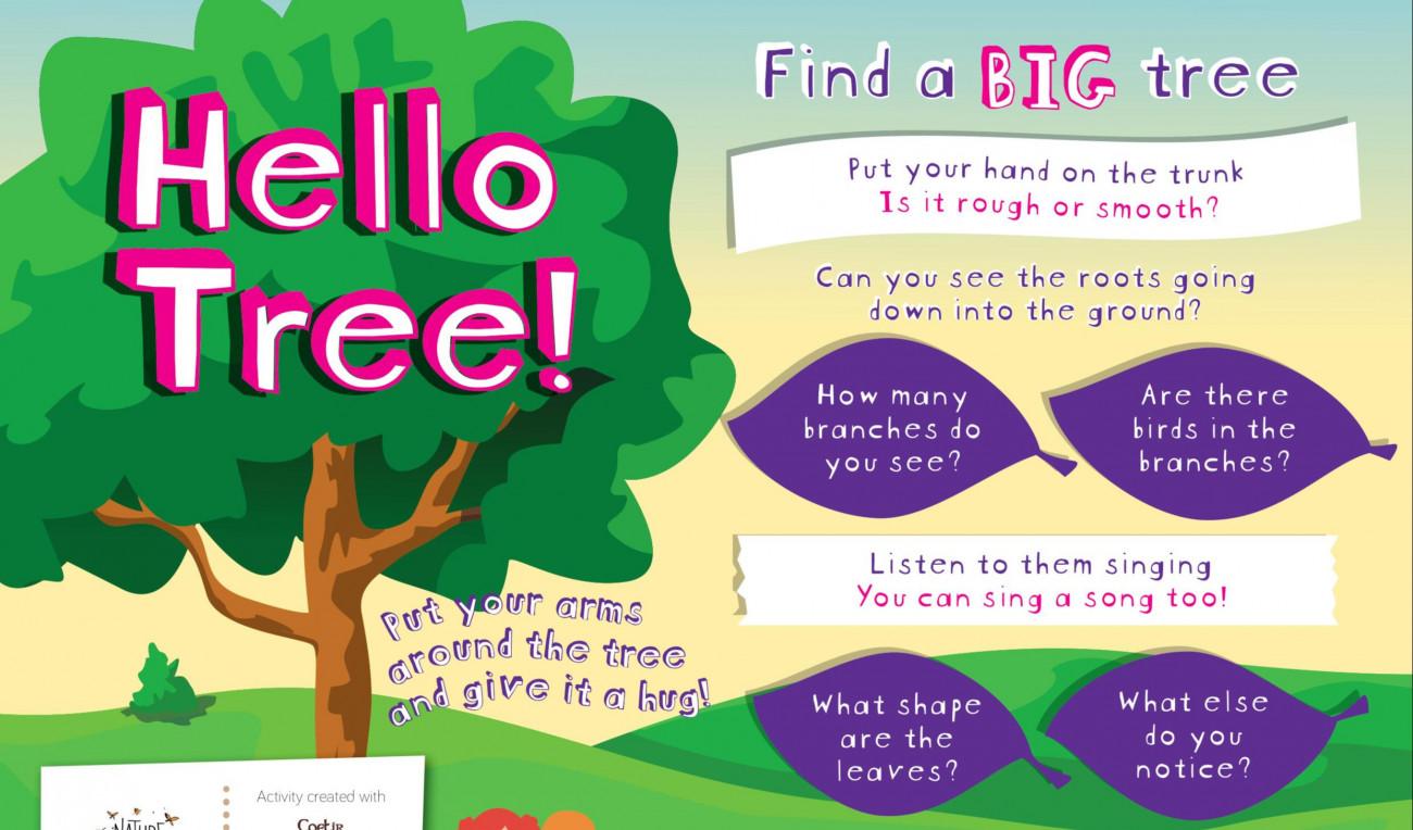 Hello Tree!
