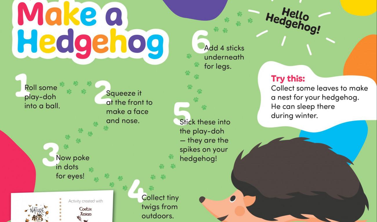 Make a Hedgehog